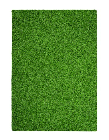 tapis exterieur imitation pelouse tapishop With tapis imitation pelouse